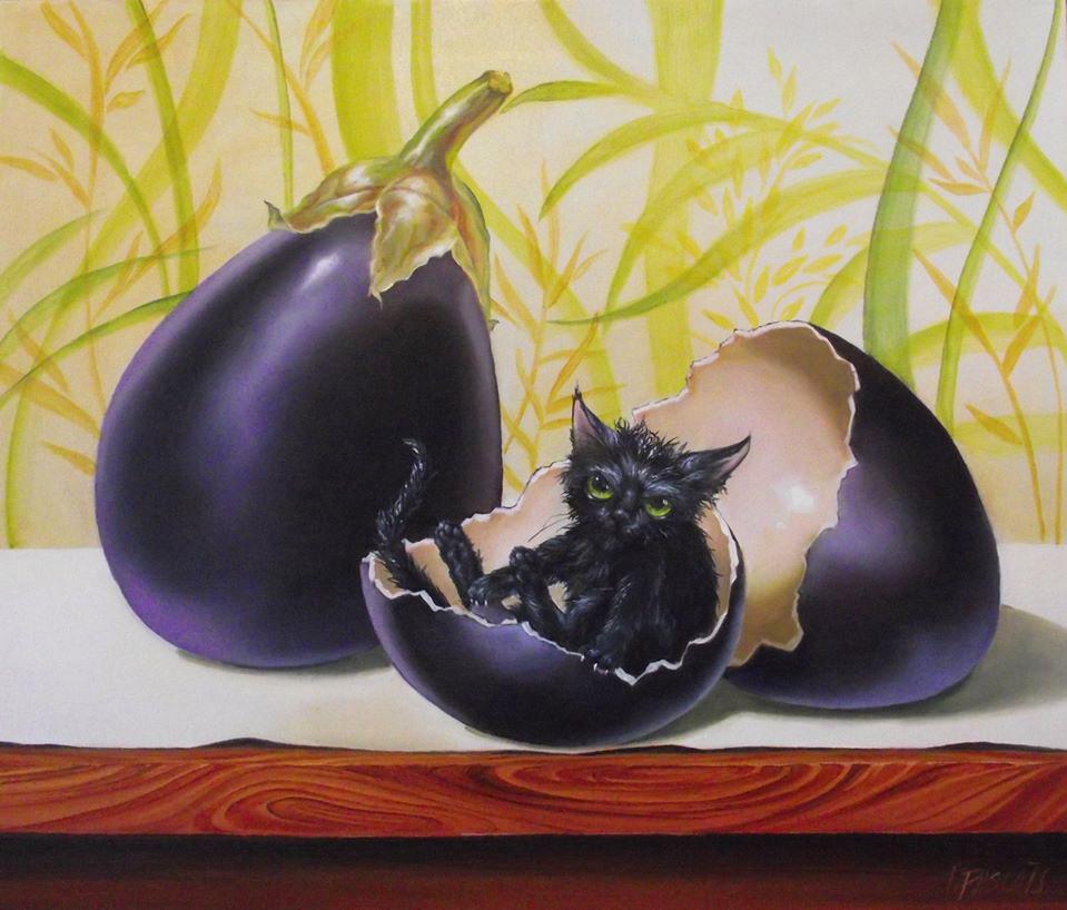 Egg plant OGM