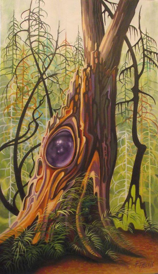Mystères de la forêt pluviale